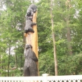 bears-in-a-tree