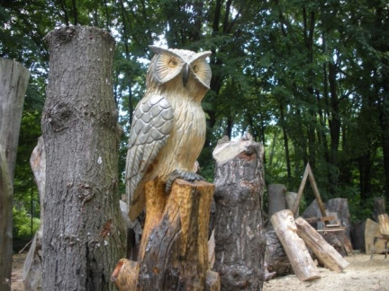 Owl on a Stump
