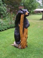 Bear with a Stump 2